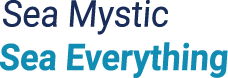 Mystic Pass Card Logo